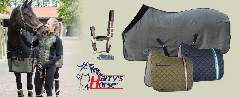 Harry's Horse Weken 2020