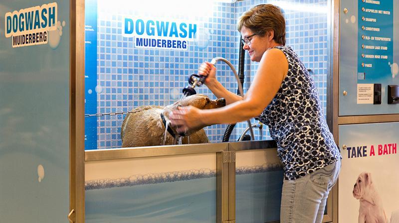 Dogwash hondenwasstraat